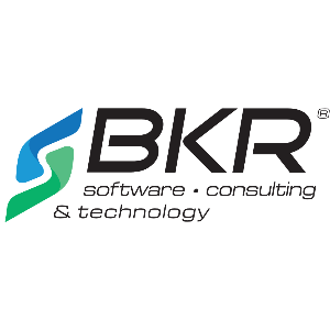 BKR Software Consulting & Technology logo